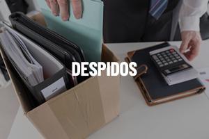 Despidos_Cluster